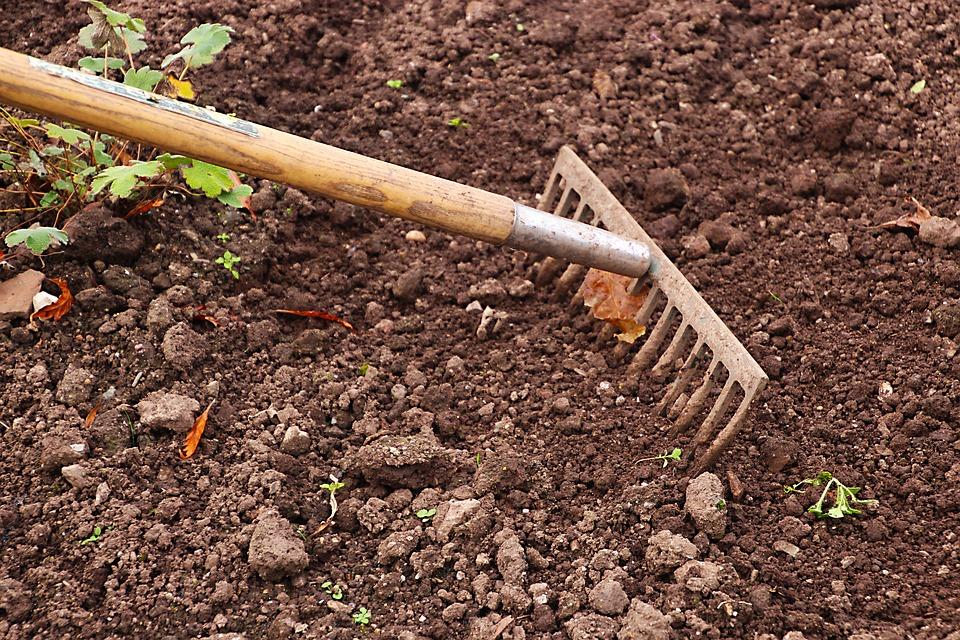 Des conseils pour désherber naturellement mon jardin